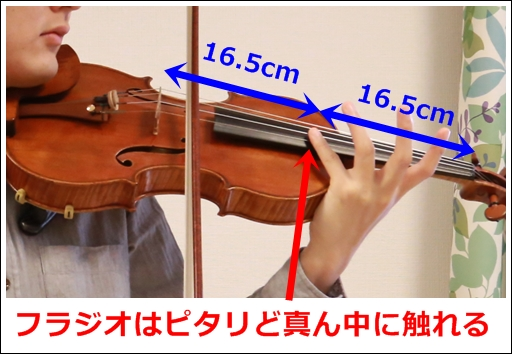 バイオリン フラジオレットの ...