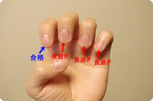 爪半月の大小で健康・不健康が分かる?|プラスコ …